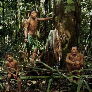 La tribu de los pirahãs