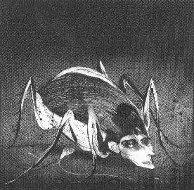 Dibujo de La metamorfosis de Luis Scafati