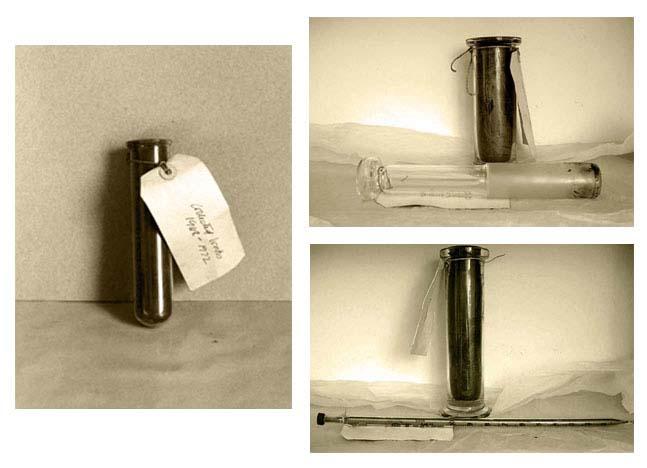 Tubos de ensayo con las cenizas de las obras de Susan Hiller