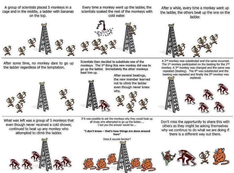 Parábola de los monos