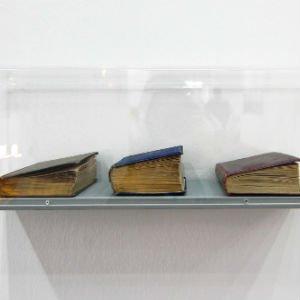 Los libros que respiran