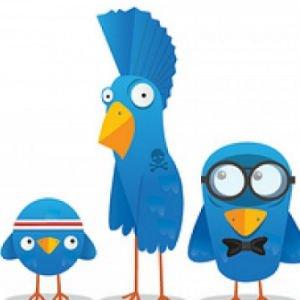 Cada tuit reafirma nuestro perfil digital