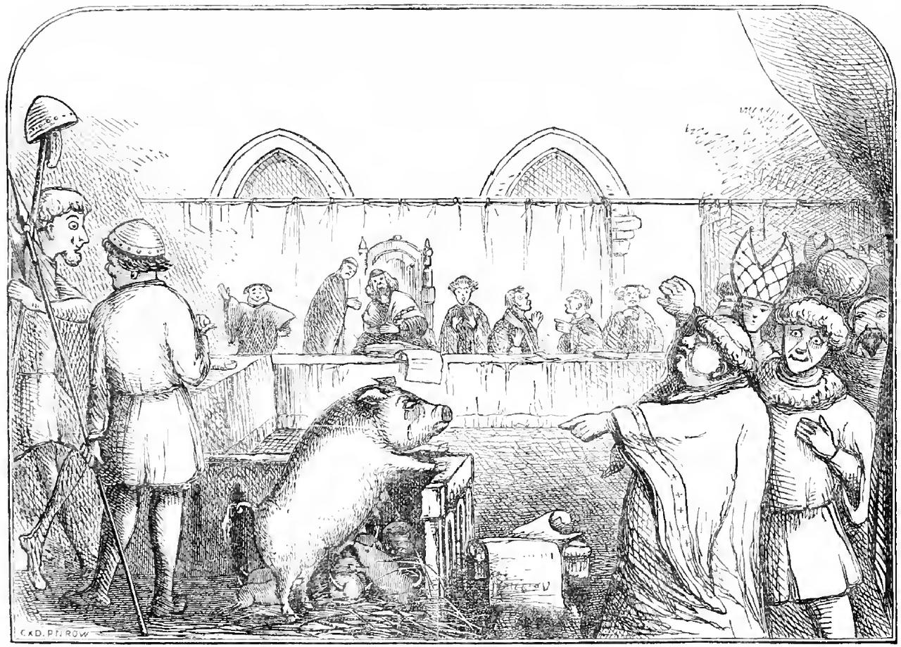 Ilustración que representa una cerda y sus lechones de ser juzgado por el asesinato de un niño