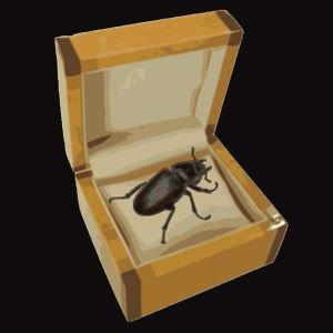 El escarabajo de Wittgenstein