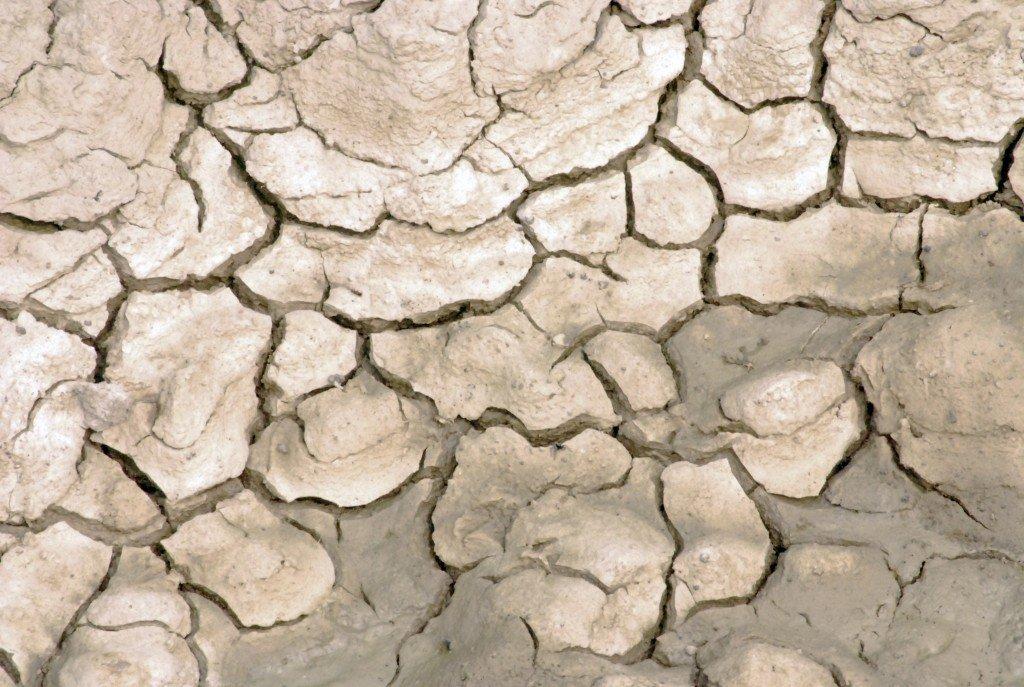 El Sáhara avanza inexorablemente