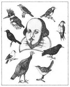 Las aves de Shakespeare