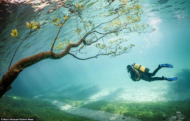 fotografías-de-green-lake-australia-02