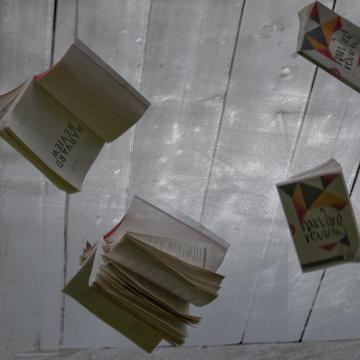libros arrojados