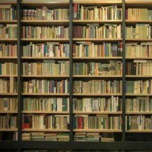Librería Mephisto en Shanghai, donde se puede dormir (Foto de Youth.cn)