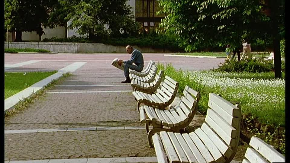 leer en un parque