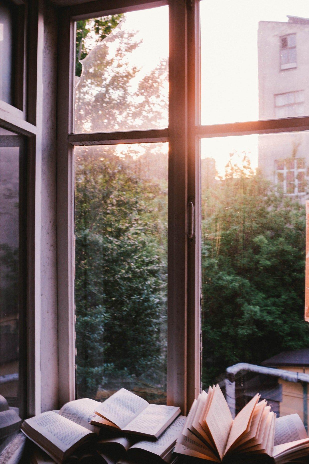 libros-ventana-twitter