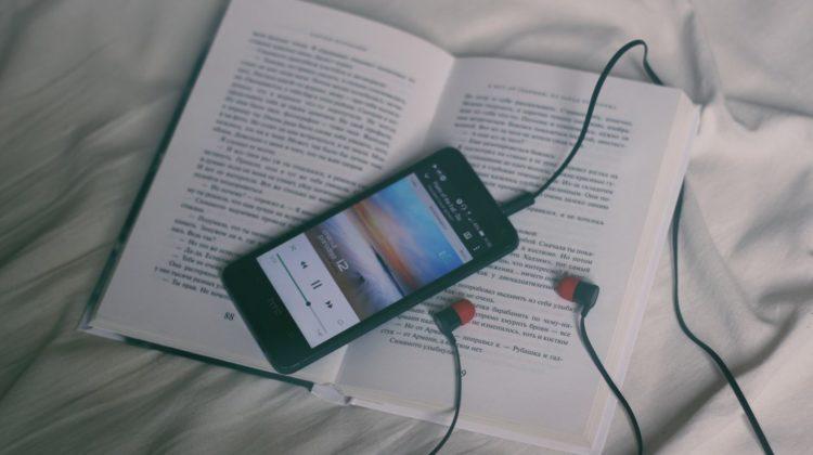 cerebro incapaz de distinguir audiolibro libro voxeles