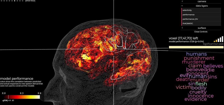mapa del cerebro mediante fMRI