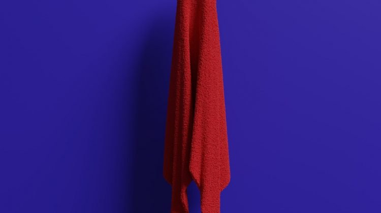 feliz dia de la toalla