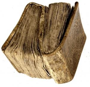 Los libros siameses3