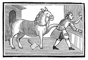 El caballo se convirtió en caballerizo