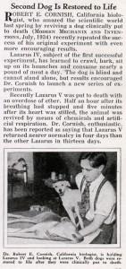 Recortes de prensa de la época