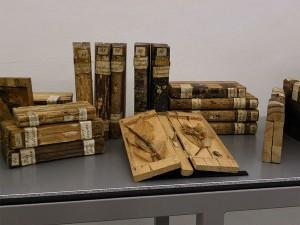 Xylotheka en la biblioteca de la abadía de Lilienfeld, Austria